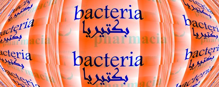 سلالات البكتيريا│معلومات مبسطة