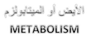 معنى كلمة الأيض أو الميتابولزم METABOLISM ؟