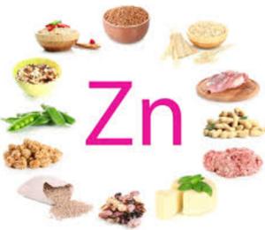 الزنك ZINC