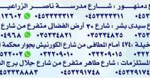 مصر – شركة صيادلة البحيرة للأدوية